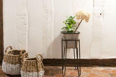 Rebstock Pflanzenständer